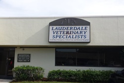 vets in ft lauderdale, veterinarians in fort lauderdale florida